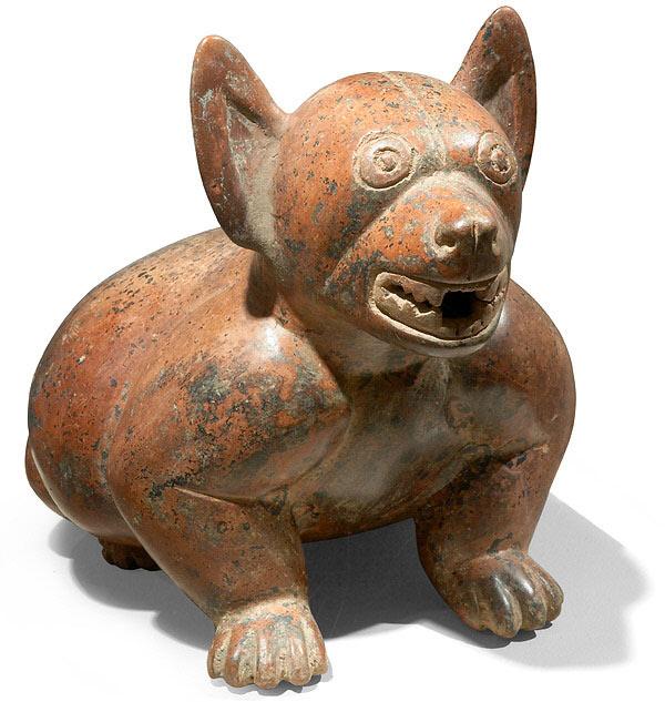 Colima - DOG