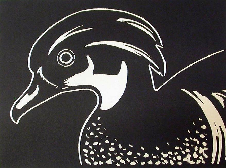 Wood Duck, n.d., woodcut