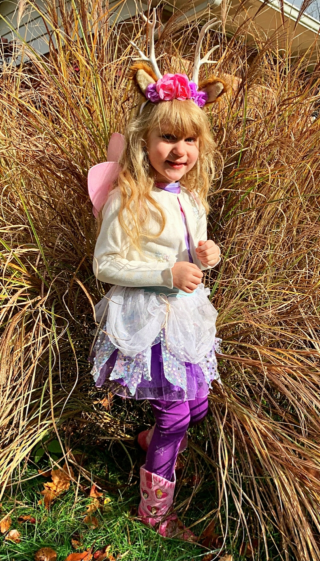 Faerie Skirt and Wand
