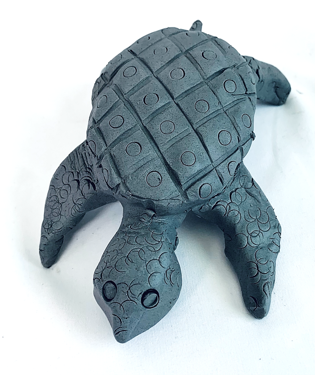 A completed clay turtle from this week's prject.